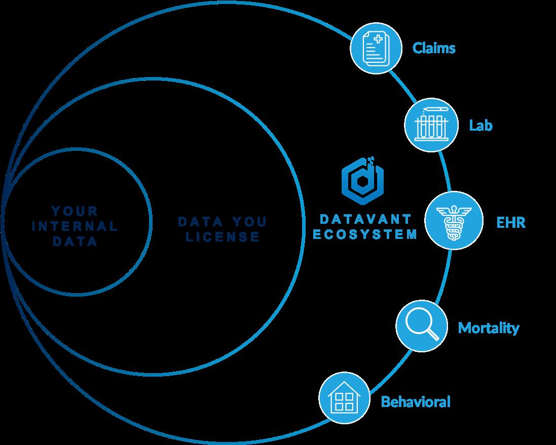 ecosystem graphic
